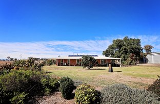 Picture of 42 Doughty's Lane, Tumbarumba NSW 2653