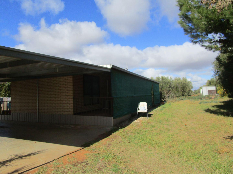 151 Gordon Road, Barmera SA 5345, Image 0