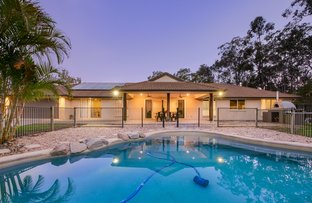 Picture of 353 Spring Mountain Drive, Greenbank QLD 4124