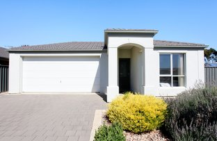 Picture of 13 Maple Street, Munno Para West SA 5115