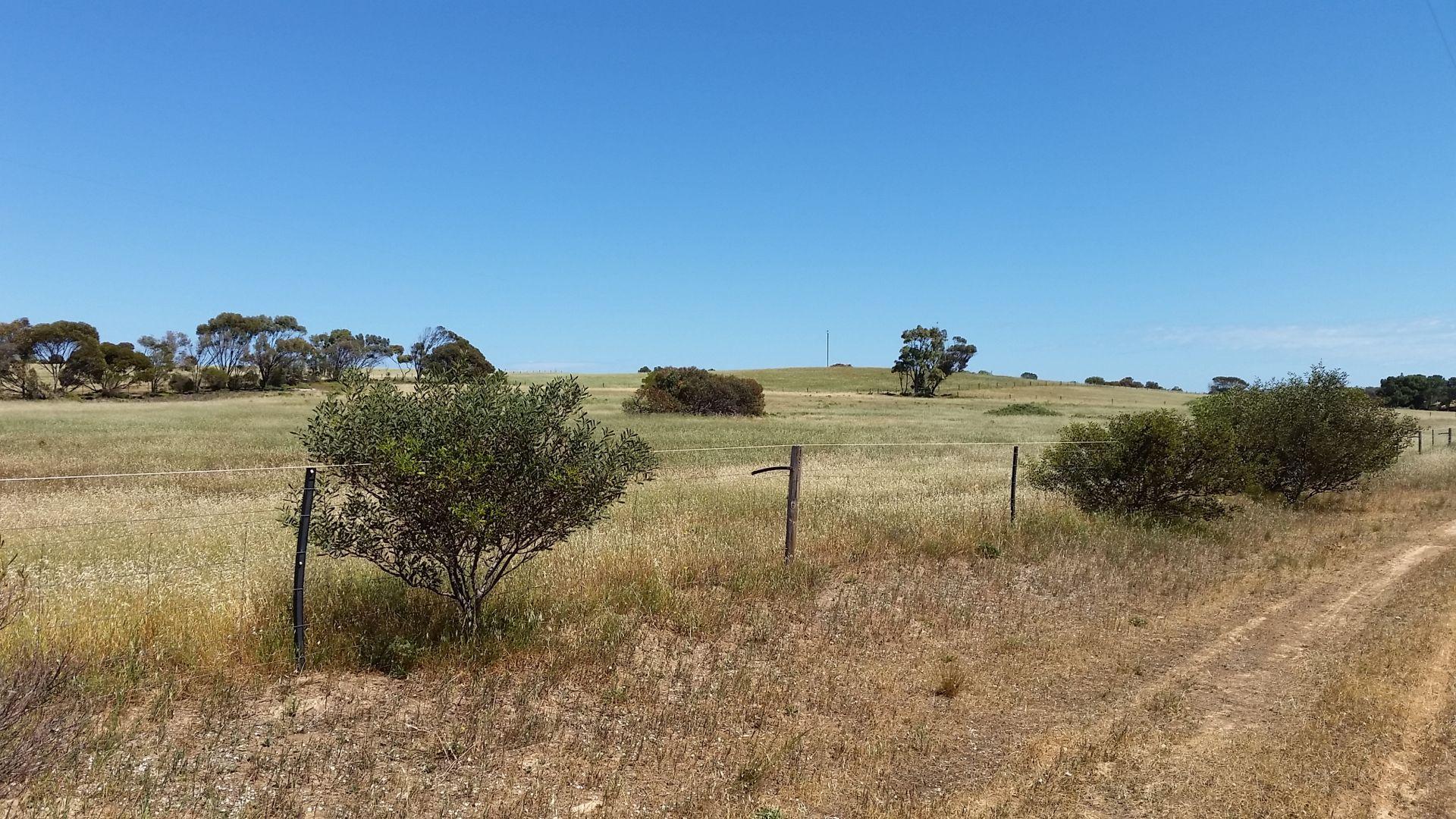 Section 67 Alcanabie Road, Streaky Bay SA 5680, Image 2