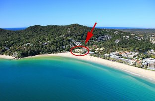 Picture of 304/71 'Netanya' Hastings Street, Noosa Heads QLD 4567