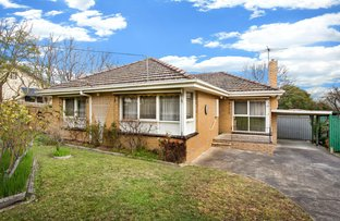 Picture of 17 Shasta Avenue, Ringwood East VIC 3135