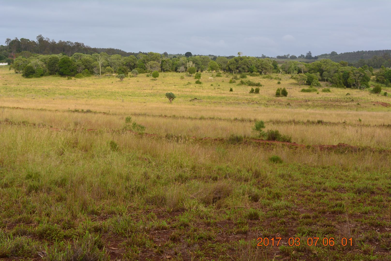 Speedwell QLD 4613, Image 1