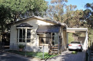 Picture of 4 Ash Drive, Nuriootpa SA 5355