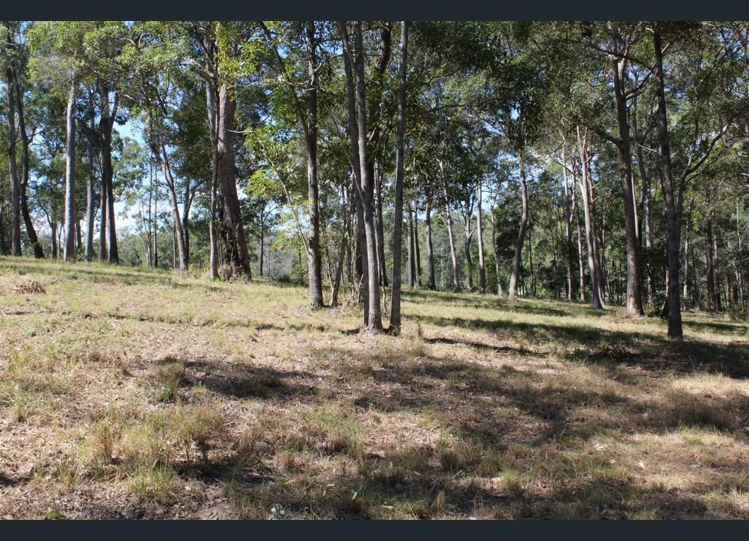 LOT 3 Stottenville Road, Bauple QLD 4650, Image 2