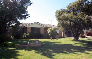 Picture of 23 Geneva Crescent, Lake Albert NSW 2650