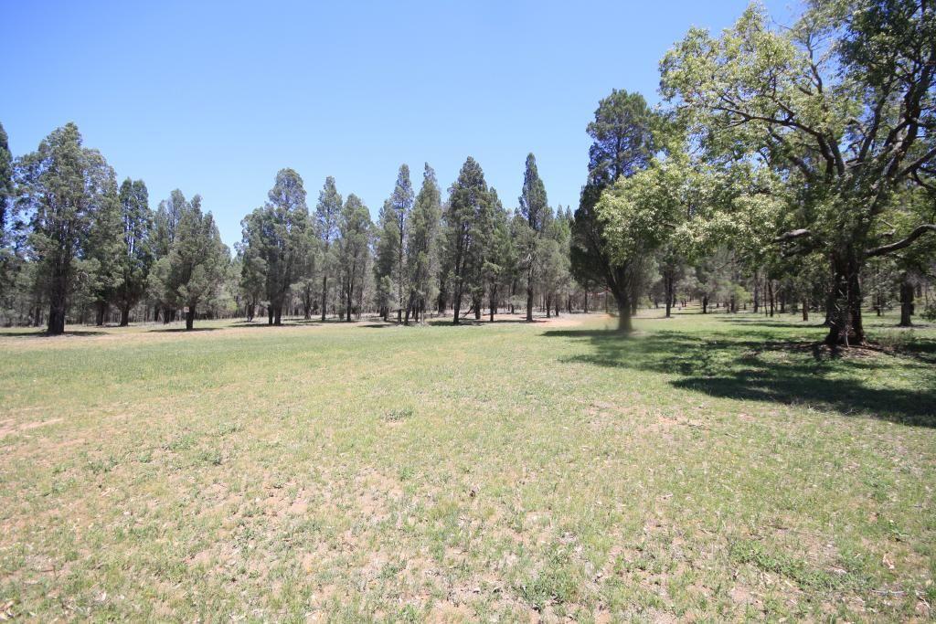 800 Worondi Creek Road, Gungal NSW 2333, Image 1