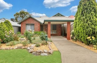 7 Cuneo Place, Golden Grove SA 5125