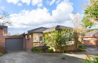 Picture of 3/70 Essex Road, Surrey Hills VIC 3127
