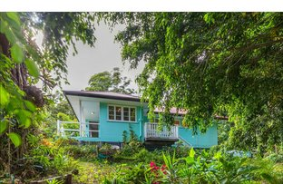 Picture of 12 Kinabalu Drive, Tamborine Mountain QLD 4272