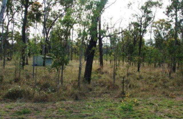 25 Dalrymple Drive, Millstream QLD 4888, Image 2