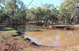 * Karoo, Cobar NSW 2835
