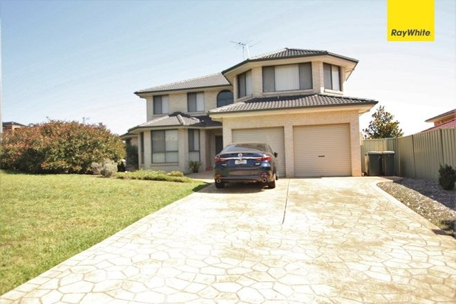 Picture of 1 Glen Avon, GLEN ALPINE NSW 2560