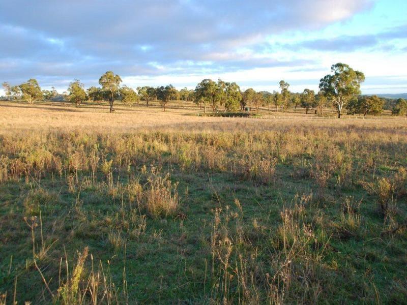 5 Oxley Drive, Walcha NSW 2354, Image 2