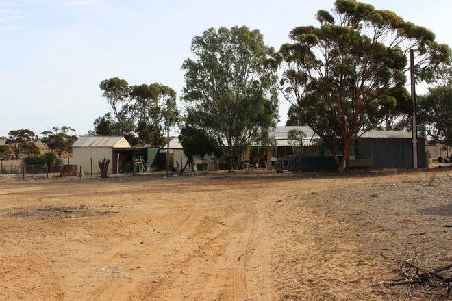 Picture of 535 Burbridge Road, ETTRICK SA 5253