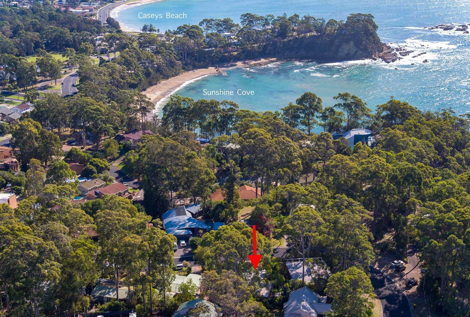 12 Burrawang Crescent, Sunshine Bay NSW 2536, Image 2