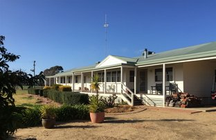 Picture of . The Rookery, Deniliquin NSW 2710