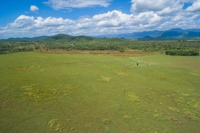 Picture of 145 Midge Point Road, BLOOMSBURY QLD 4799