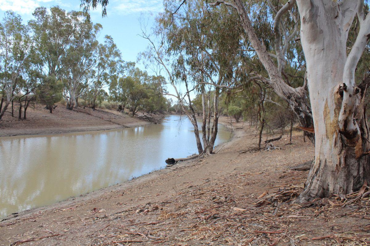 """Mercal"" Pretty Pine Road, Moulamein NSW 2733, Image 0"