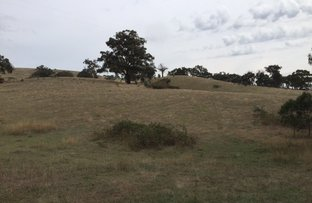Lot 1 Murhison Spur Rd, Reedy Creek VIC 3658