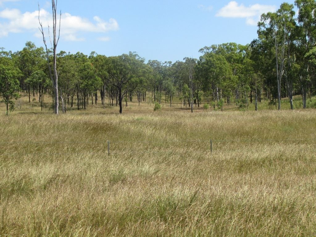 00 Neil Creek Rd, Calliope QLD 4680, Image 2