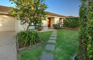 Picture of 7 Tolman St, Sippy Downs QLD 4556