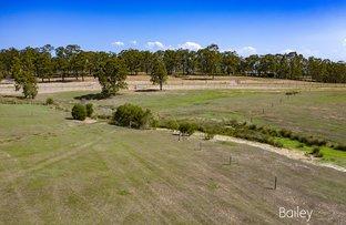 Picture of 202/35 Freeman Close, Singleton NSW 2330
