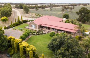 Picture of 213 Carousel Road, Keith SA 5267