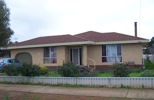 Picture of 40 TAYLOR STREET, Dumbleyung WA 6350
