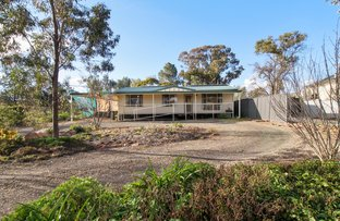 Picture of 35 Prince Street, Forbes NSW 2871