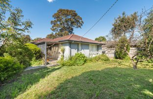 Picture of 13 Jabiru Drive, Chelsea Heights VIC 3196