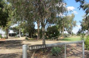 155 Gulai Road, Moree NSW 2400