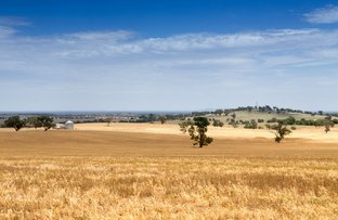 "Picture of ""KARINYAH"" 847 MILLWOOD Road, Wagga Wagga NSW 2650"