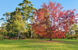 Picture of Lot 404 Toms Pocket, Turramurra NSW 2074