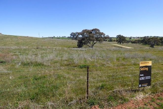 Picture of 3 Wickham Lane, YOUNG NSW 2594