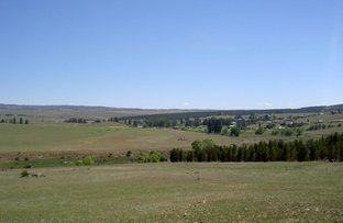 Picture of Lot 3 | 71 Hickeys Road, Dalgety NSW 2628