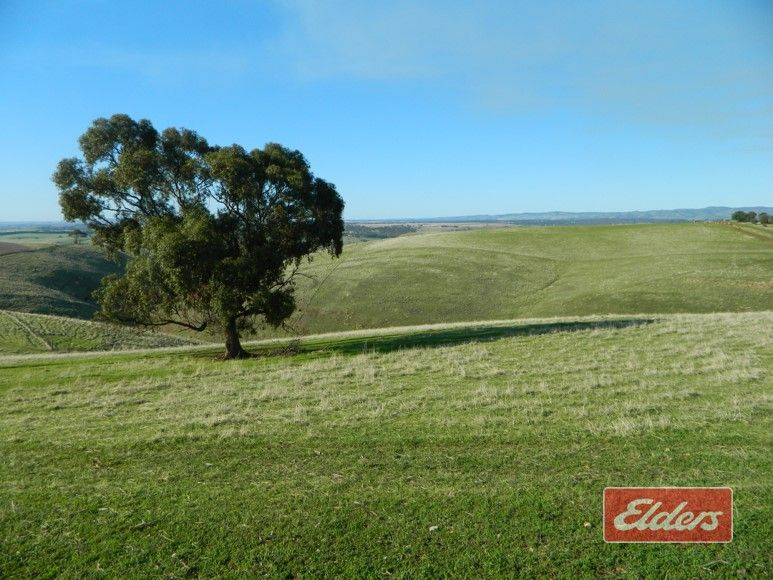 Prop Lot 204 Gawler One Tree Hill Road, One Tree Hill SA 5114, Image 1
