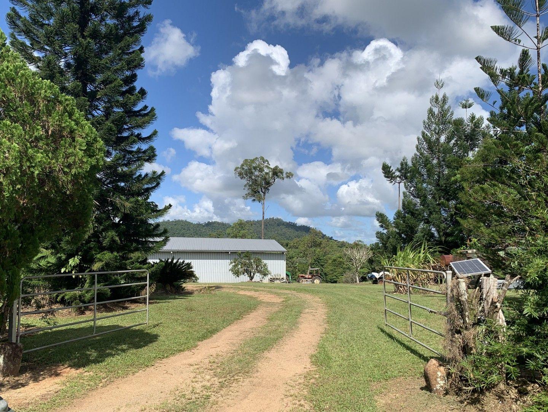 173 Kinjun Road, Dingo Pocket QLD 4854, Image 0