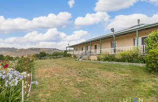 Picture of 31 Trail Place, Royalla NSW 2620