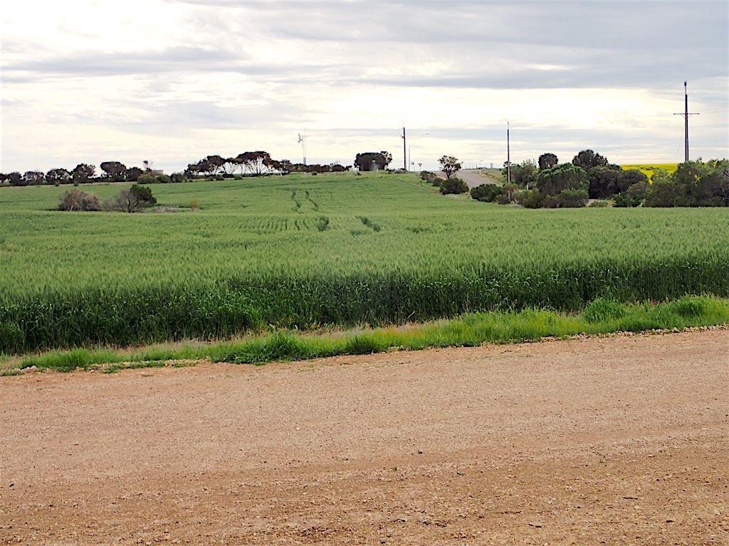 3 First street, Port Moorowie SA 5576, Image 2