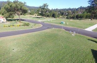 1 Tareeda Way, Nimbin NSW 2480