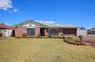 Picture of 1 Dealy Close, Cannington WA 6107