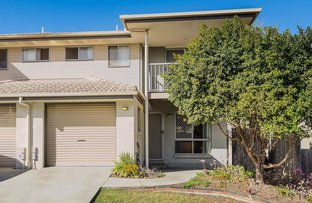 Picture of 29/130 Jutland Street, Oxley QLD 4075