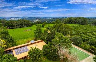 628 Tregeagle Road, Tregeagle NSW 2480