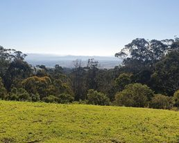 1045 Myrtle Mountain Road, Myrtle Mountain NSW 2550, Image 0