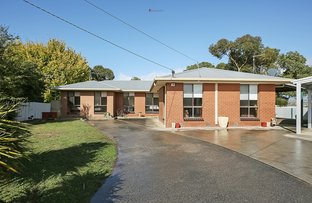 Picture of 3 Lyn Court, Colac VIC 3250