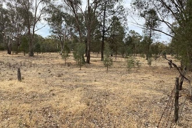Picture of Lot 108 Hill Street, THE ROCK NSW 2655