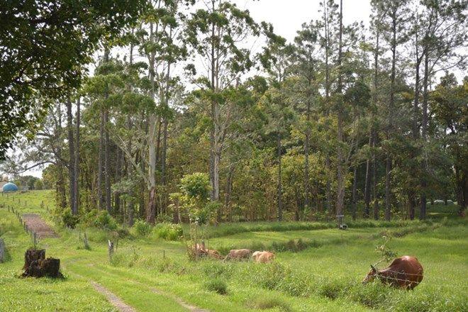 Picture of MUNGALLI QLD 4886