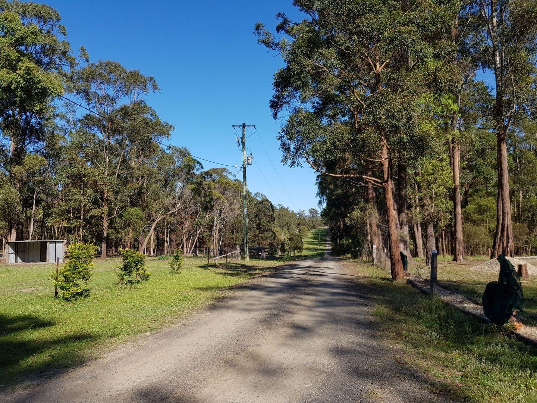 56 Richards Place, Verges Creek NSW 2440, Image 2